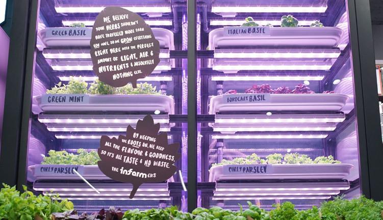 Odling i butiken styrs med maskininlärning