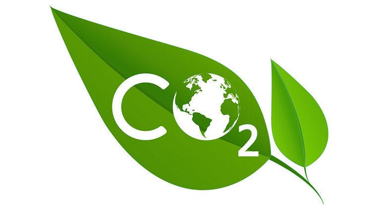 Zalando ska minska utsläpp med 80 procent
